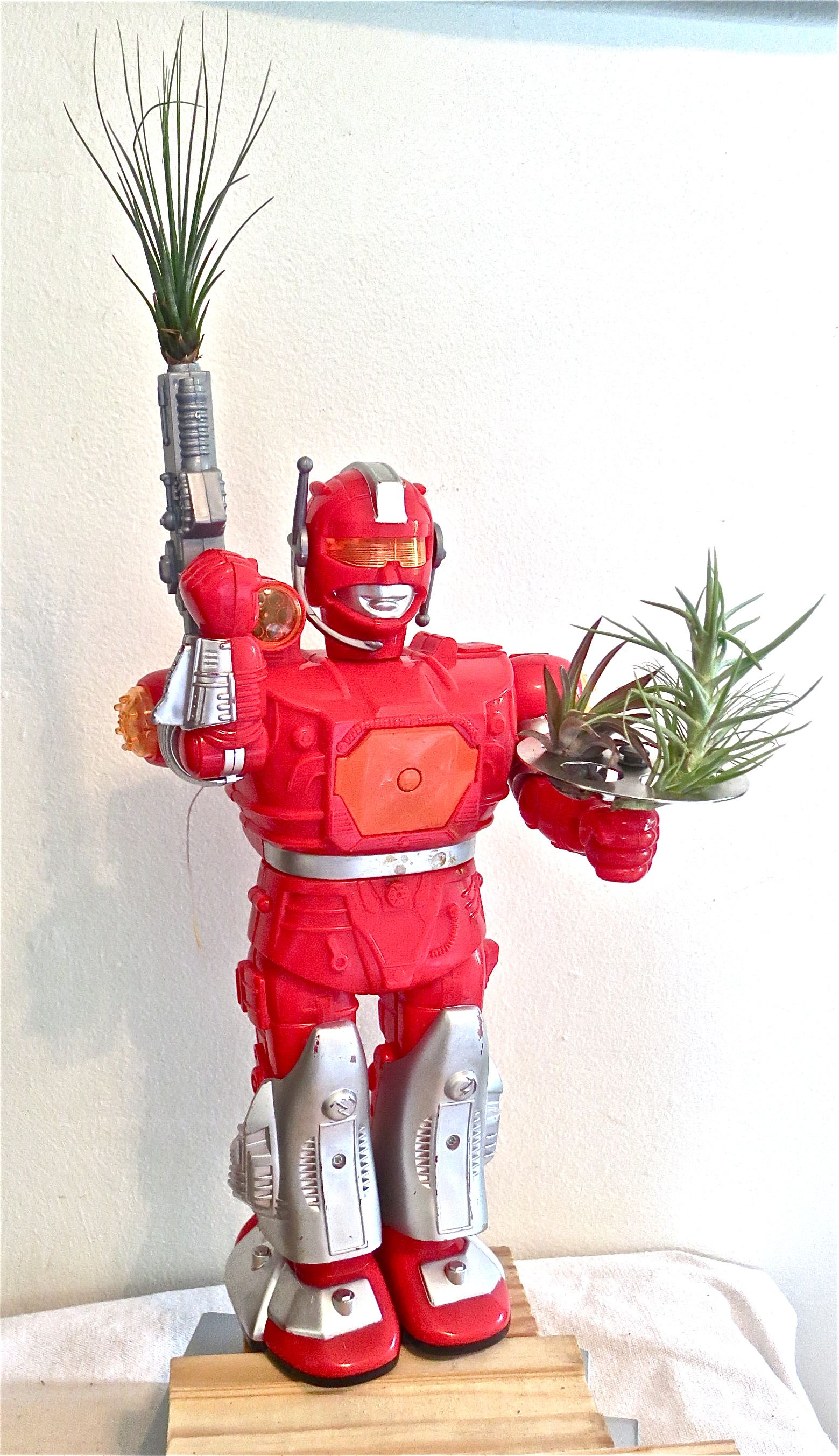 Red Robot, on Salvaged Wood and Metal Base, with Assorted ...