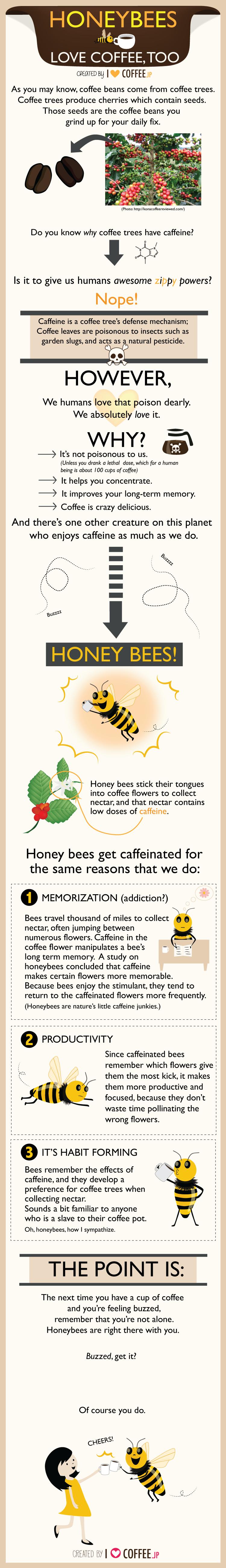bees love coffee <3