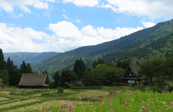 gokayama ainokura village traditional houses