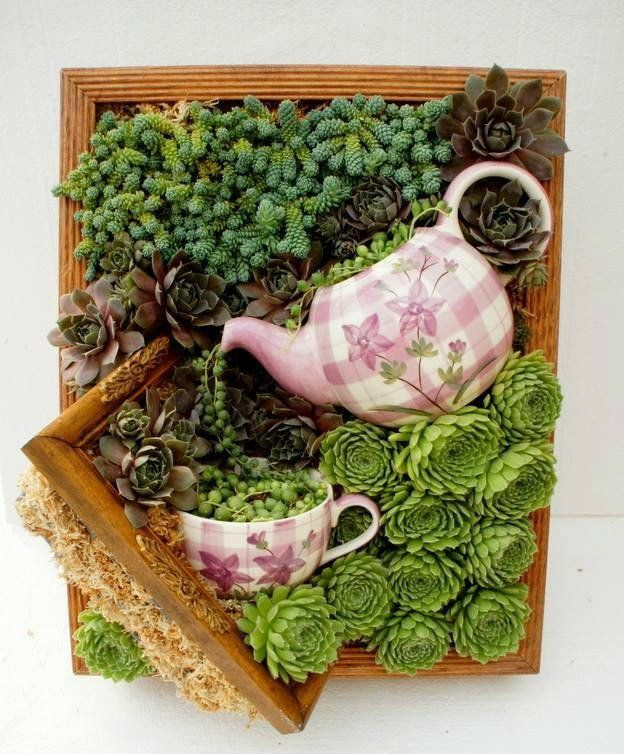 Planting Succulents In Containers Diy