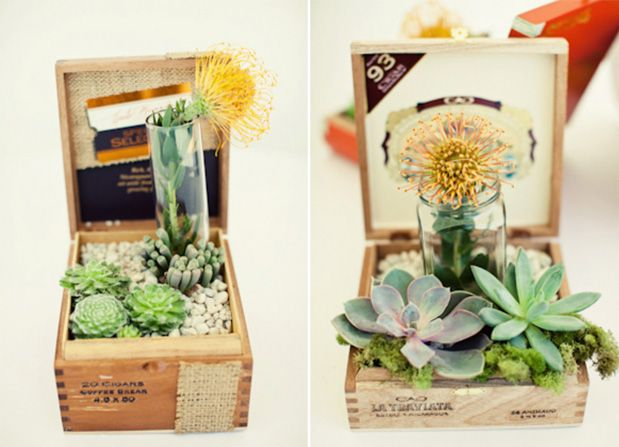 Succulents in unusual containers...