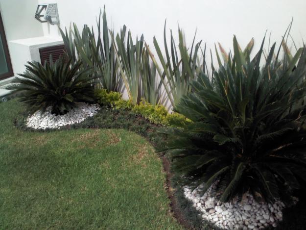 Dise o de jardines y paisajismo gardening ideas and tips - Paisajismo de jardines ...