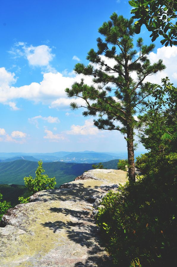 Someday I would LOVE to set aside six months and hike all 2200 miles of the Appalachian Trail.