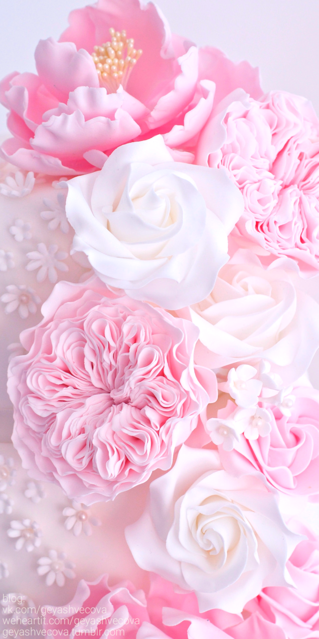 art, background, beautiful, beauty, cake, cream, cupcakes, delicious, design, dessert, eat me, food, food porn, inspiration, luxury, pink, pretty, still life, strawberry, style, sugar, sweets, wallpapers, we heart it, yummy, backgrounds