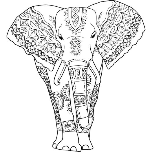 Elephant Colouring In