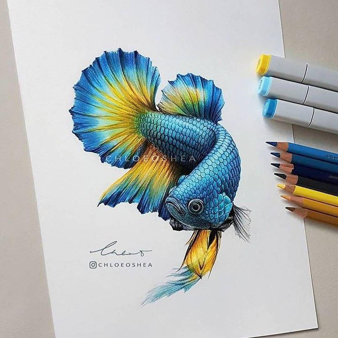 3 228 Me Gusta 5 Comentarios Art U Art U En