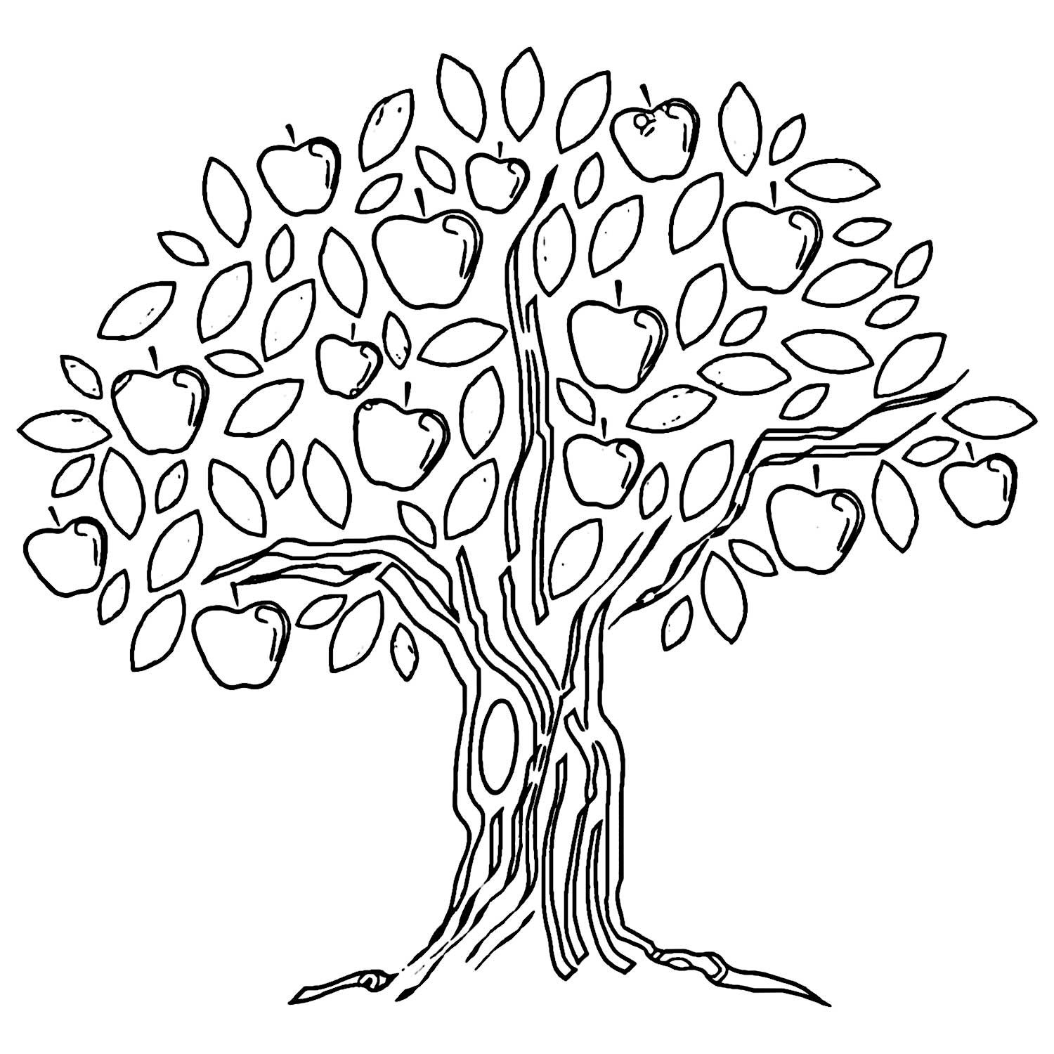 Apple Tree Coloring Page Wecoloring Tree Coloring Page Apple Coloring Pages Drawing Apple