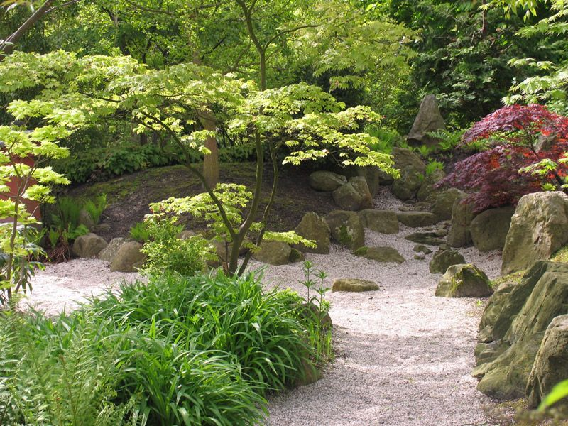 Small Japanese Garden With Stones And Maples