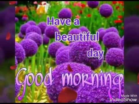 Good morning videos//wishes greetings//WhatsApp video