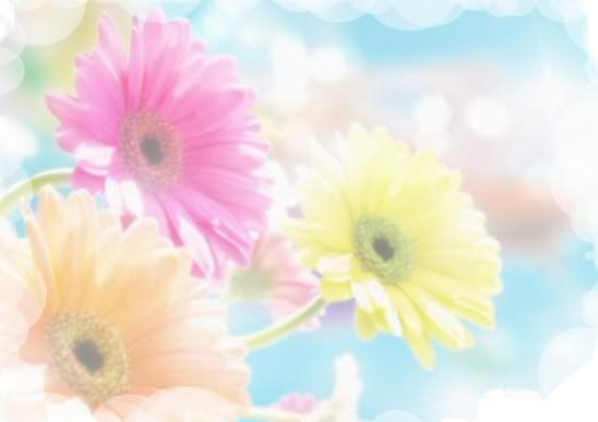 Pastel rose image