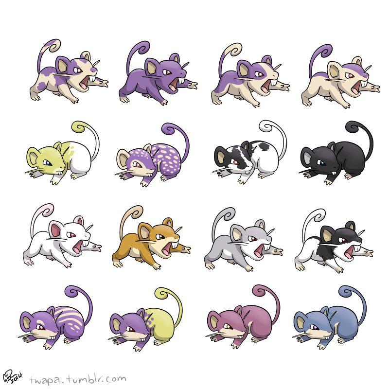 Rattata variants by twapa | Pokemon Coat Variations ...