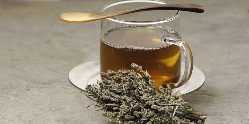 36 فائدة من أهم فوائد عشبة الشيح In 2020 Herbalism Natural Healing Remedies Herbal Remedies