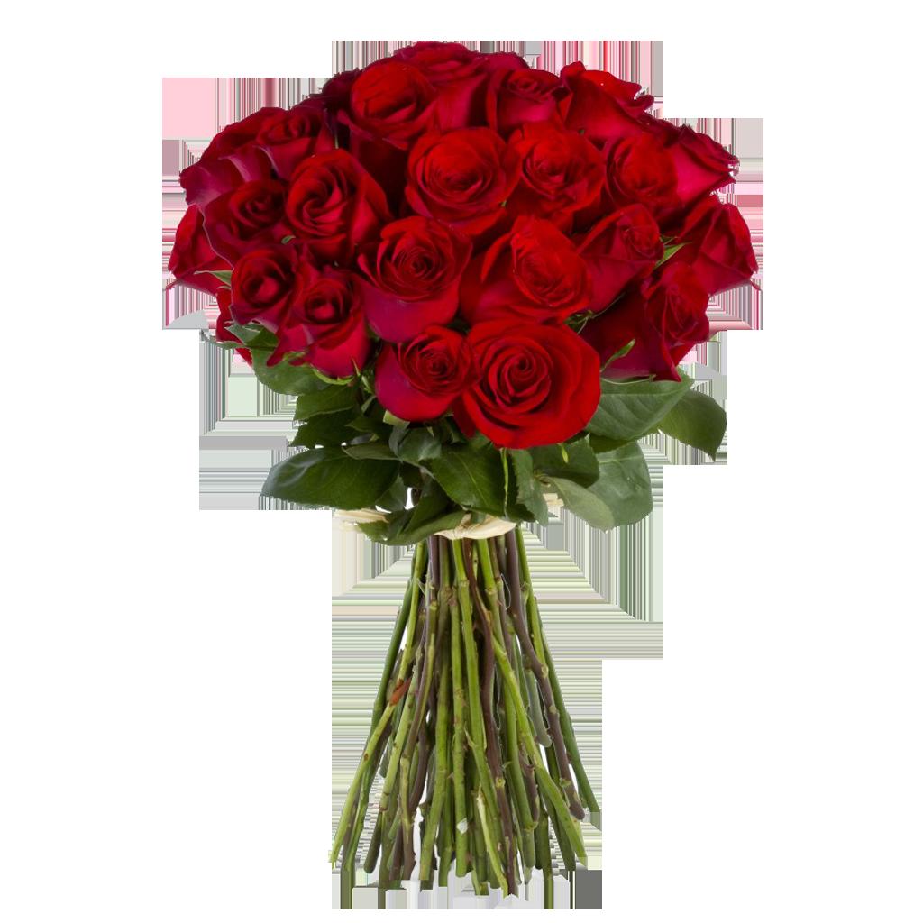 Картинки букет роз без фона, жанне
