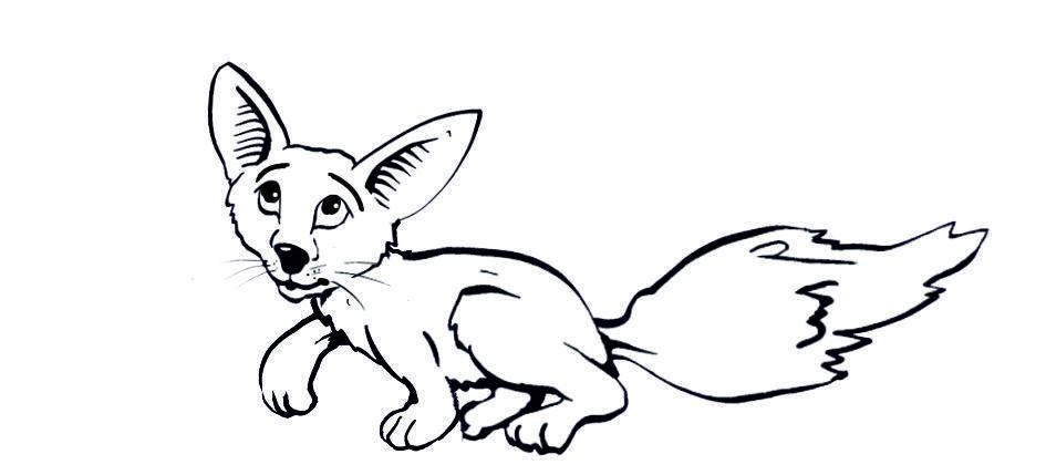 Fuchs Mit Grossen Ohren Ausmalbilder Tiere Tiere Ausmalen