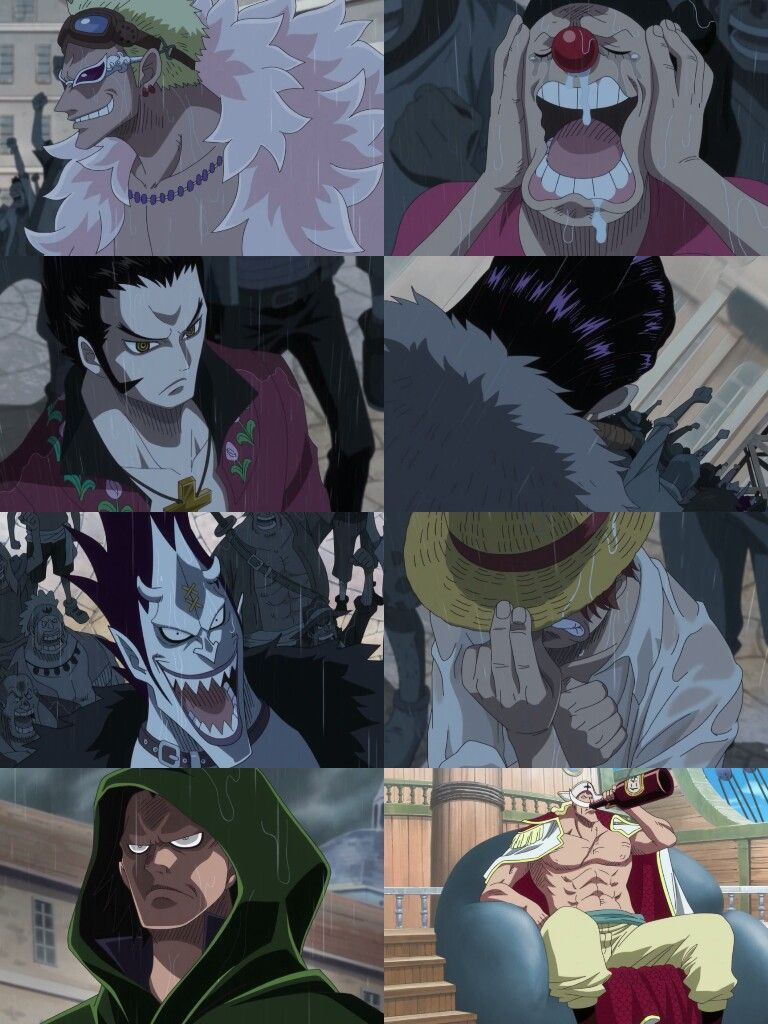 their reactions at gol d roger s execution one piece pinterest