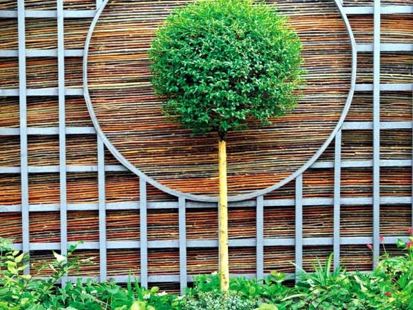 Garden Wall Ideas vertical plants for garden wall art ideas Screening Fence Or Garden Wall 102 Ideas For Garden Design