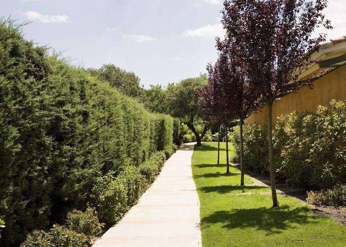 Un paisaje que crea emoción - Ideas Jardín Pinterest Emociones