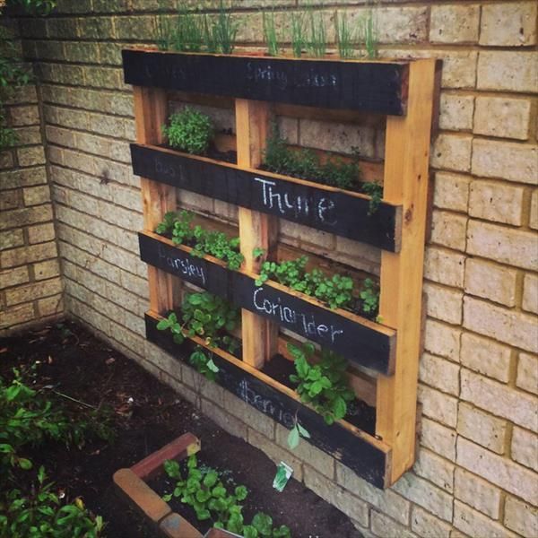we have reclaimed diy pallet vertical herb garden by using some rustic pallet skids lying in our backyard for nothing