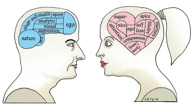 men and women wired brains the male v female brain is it all in men and women wired brains the male v female brain is it all in