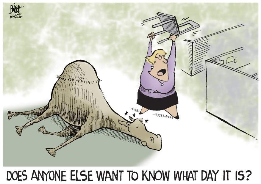 Does Anyone Else Want To Know What Day It Is | cartoon ...