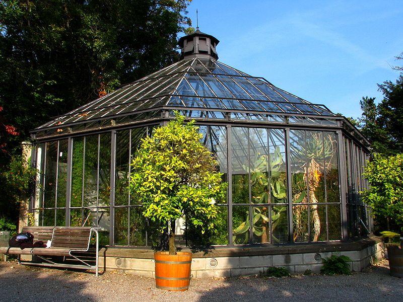 Fewo Oder Zimmer Zu Vermieten In Zurich Http Www Imsonnenbuehl Com Botanischer Garten Garten Garten Landschaftsbau