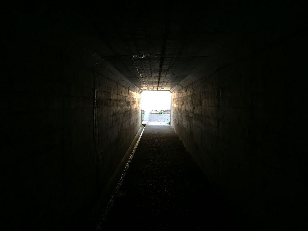3月4日(高知旅3日目) 朝 - 土佐和紙工芸村