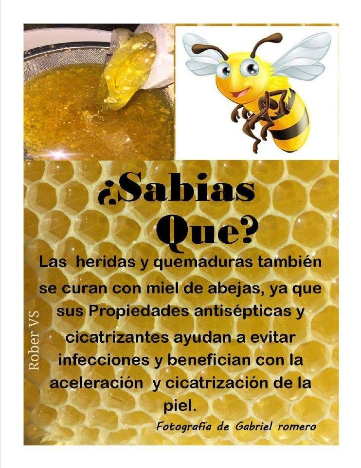 miel sobre heridas
