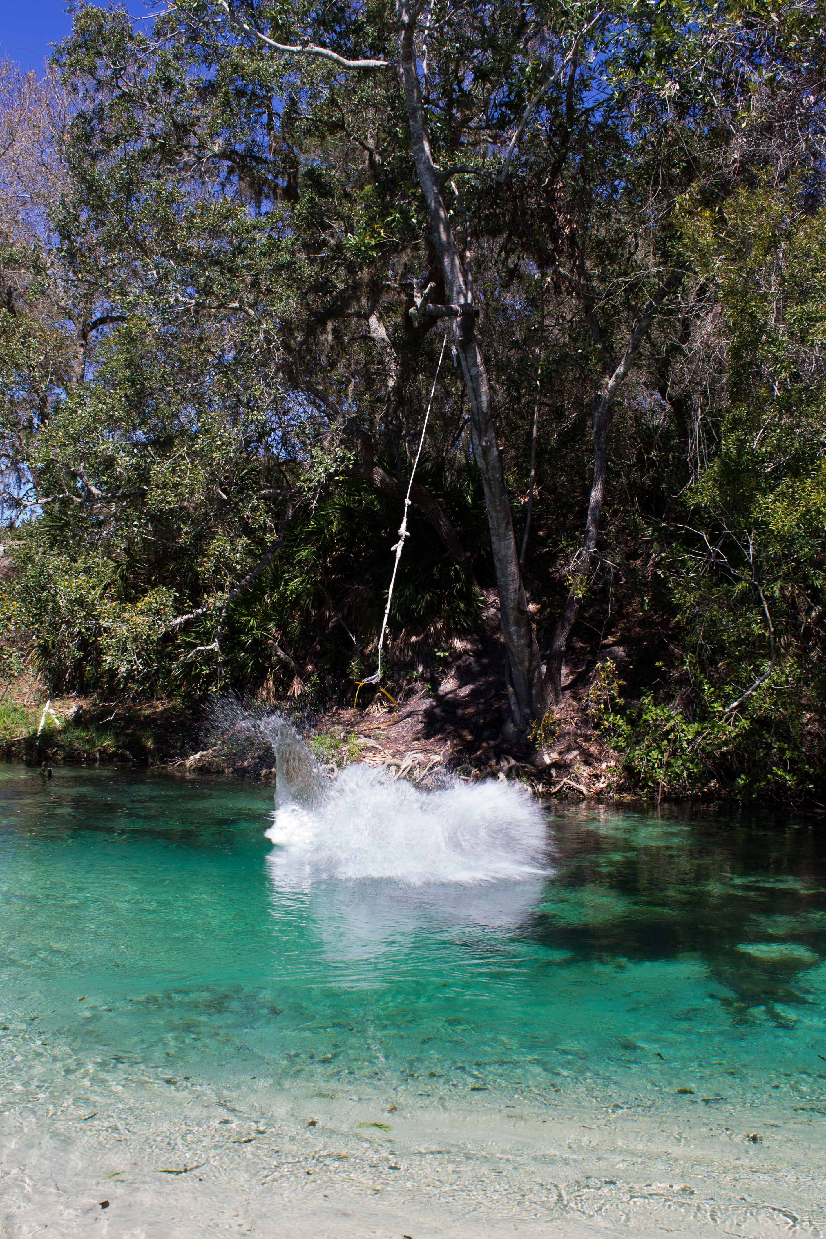 Weeki Wachee River, Florida