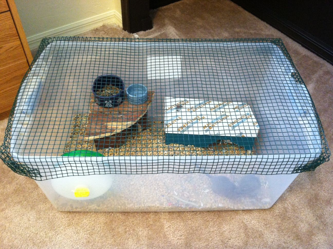 Homemade hamster cages this homemade cage houses gerbils for Homemade guinea pig