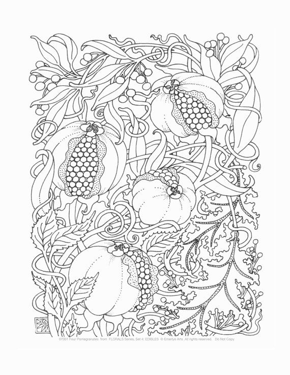 Adult Coloring Pages Edibles Set Of 12 By Emerlyearts On Etsy 2000