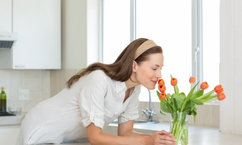 How to Make Your Home Smell Insanely Good House smells