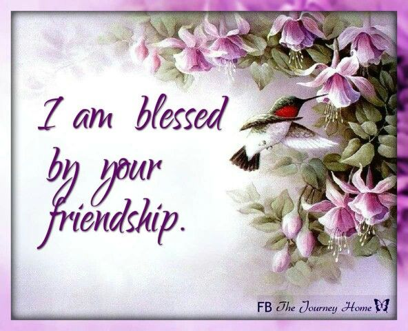 Thank You My Beautiful Friend Grace Ly Friendship Pictures