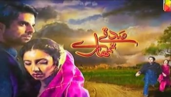 Sadqay Tumhare ~ Episode 2 Review