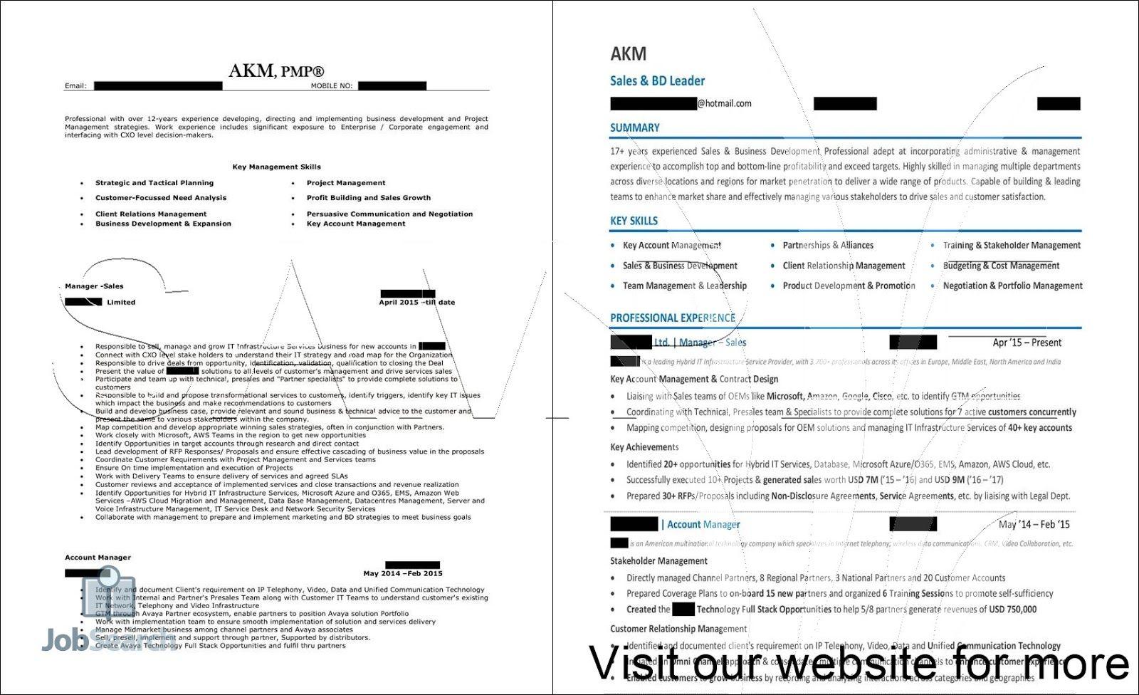 Sales Professional Resume Sample in 2020 Sales resume