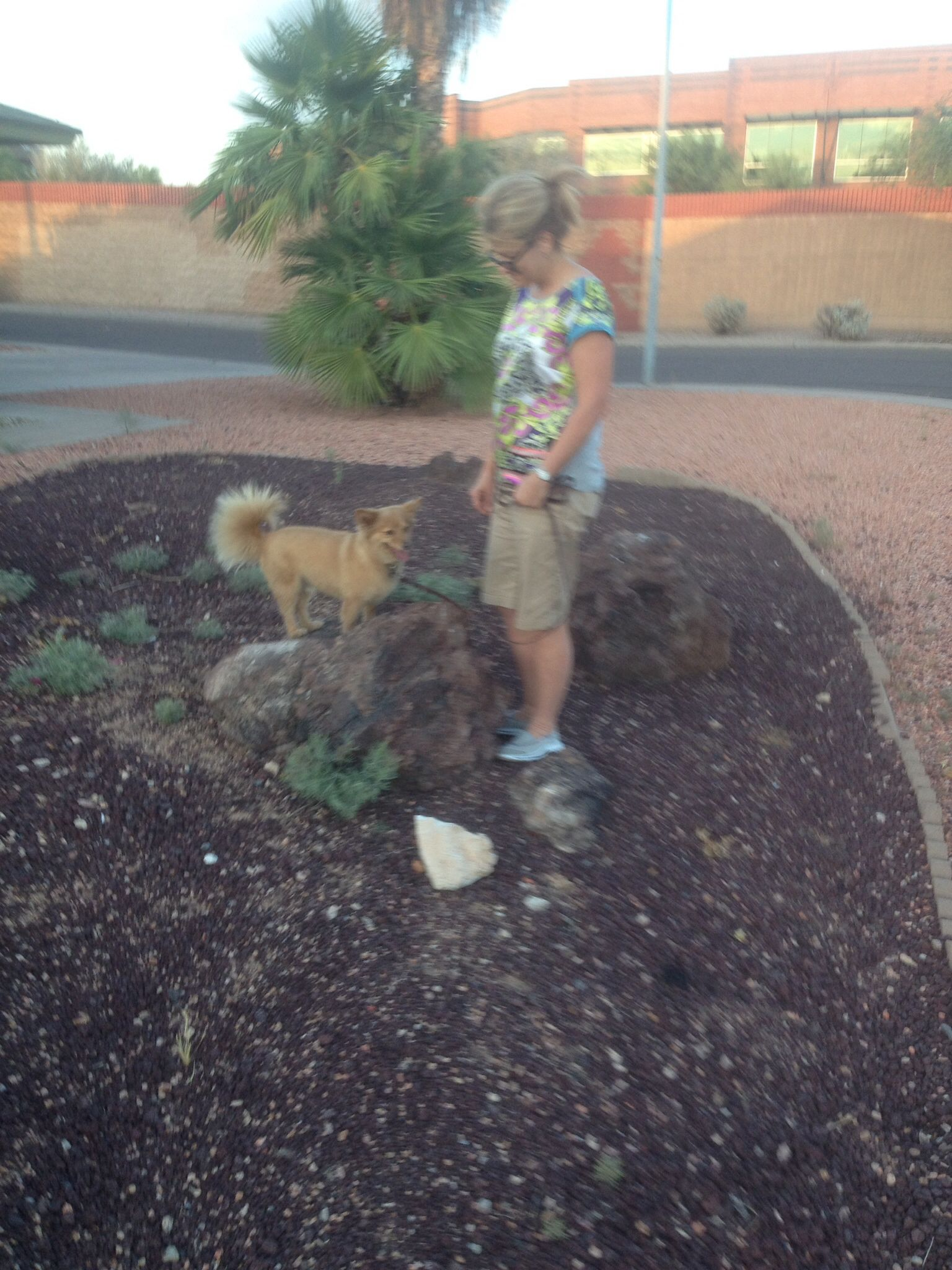 Another happy client trained their dog in Scottsdale ,az