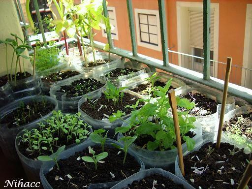 Huerto urbano ecol gico flowers and gardens - Huerto urbano balcon ...