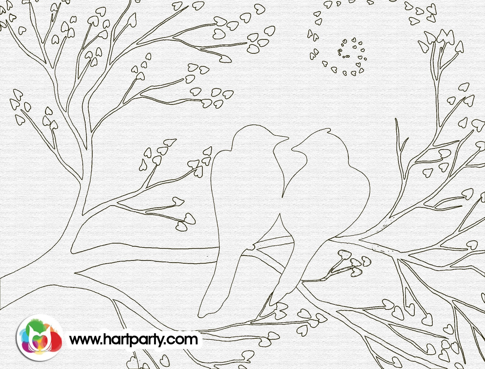 How to birds on a branch Trace-able and coloring page