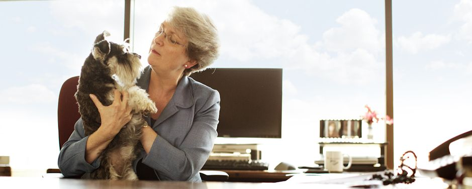 Want to get your boss on board with bringing pets to work? Our handy guide will make it simple.