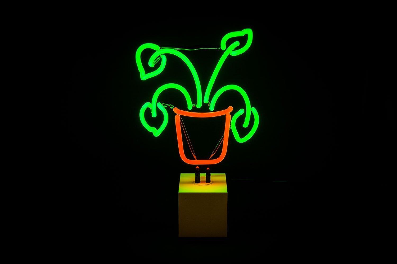 Plant Neon Sign Neon signs, Custom neon signs, Neon