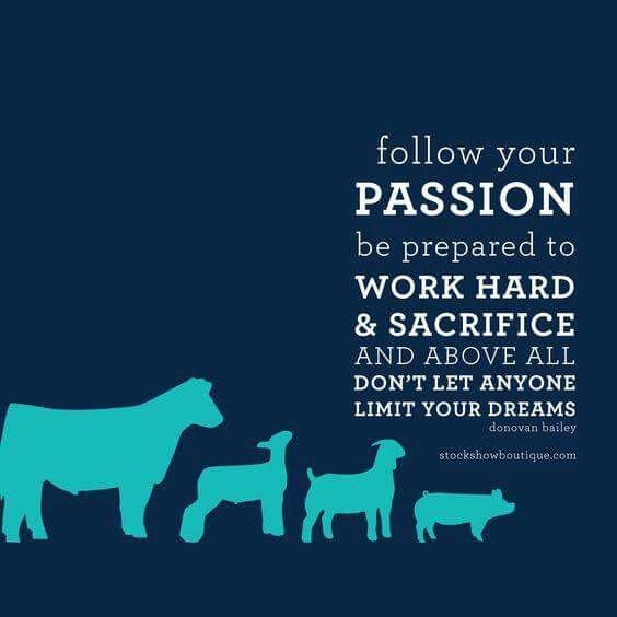 Pin By Keagan On As A Veterinarian Veterinarian Quotes Cow Quotes Stockshow Life