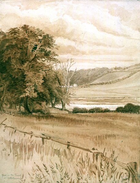 a ford on the tweed at coldstream potter beatrix v a search the collections beatrix potter illustrations beatrice potter beatrix potter a ford on the tweed at coldstream