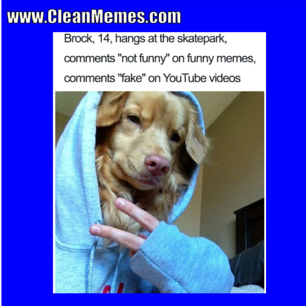 Pin By Clean Memes On Clean Memes Clean Memes Memes Funny Pictures Fails