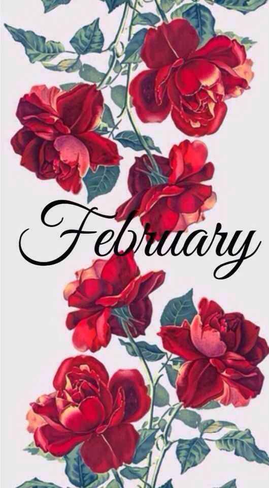 Peony Love Quote Wallpaper February New Months February In 2019 Valentines