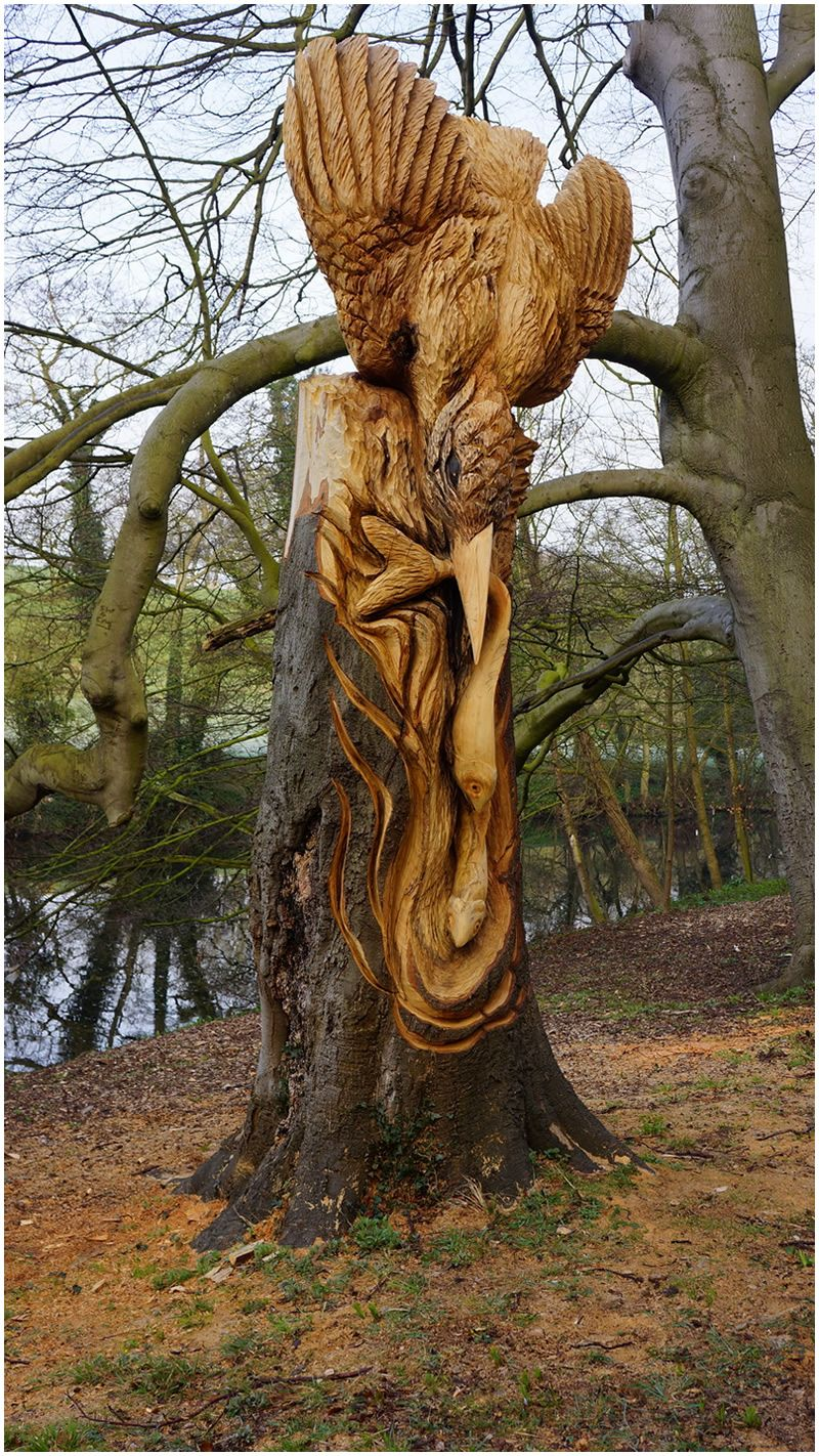 Kingfisher chainsaw carving tommy craggs sculpture