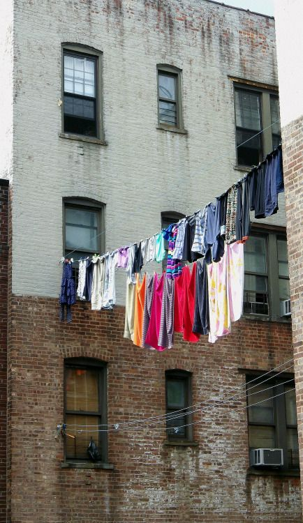 Windows and clotheslines in Bushwick.