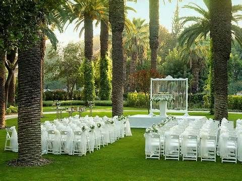 Spring Outdoor Wedding Ideas Beautiful And. Champagne Toast ...