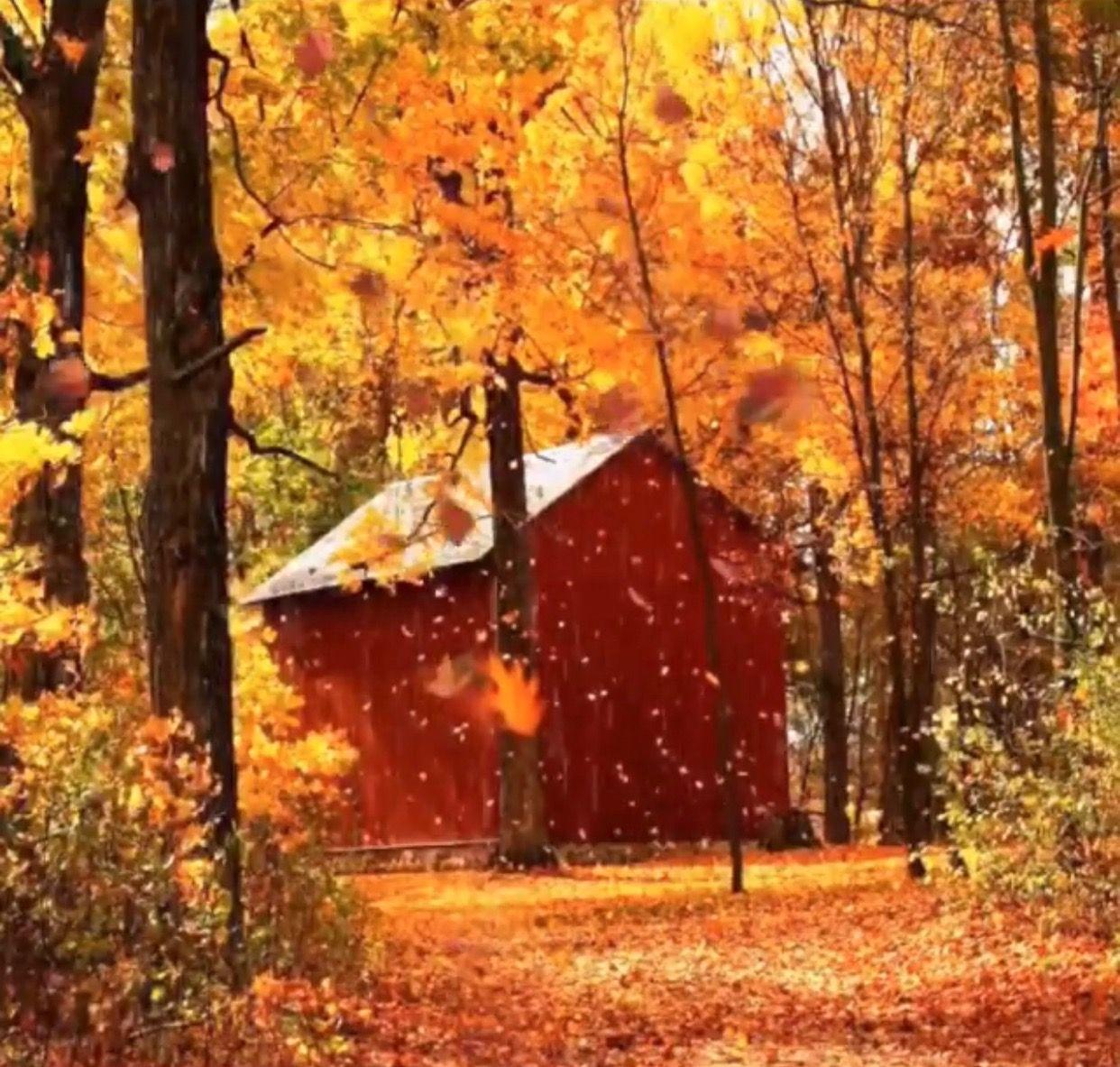 Autumn scenery, Beautiful fall, Autumn scenes