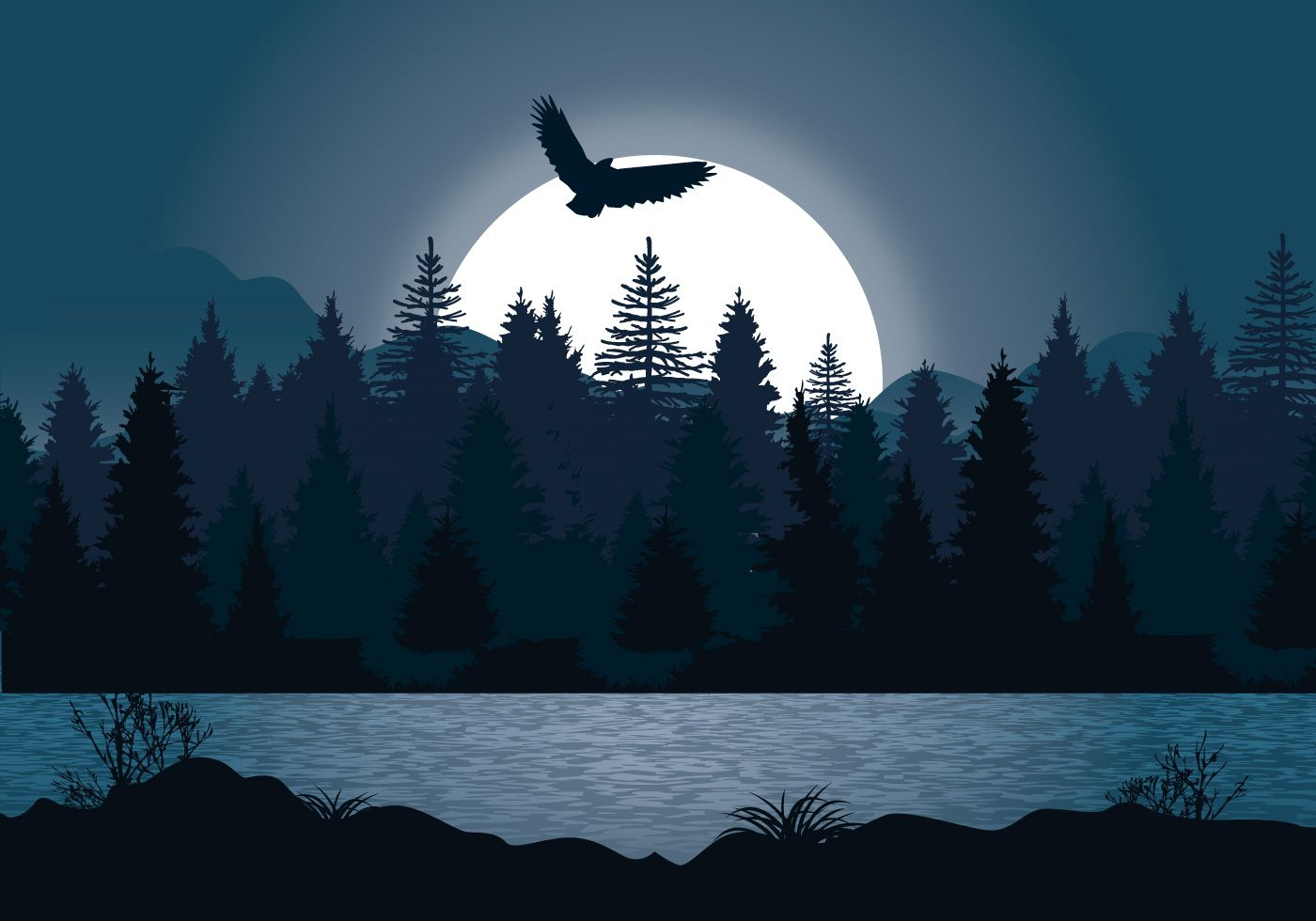 Beautiful Night Forest Illustration Forest Illustration Night Forest Forest Sunset