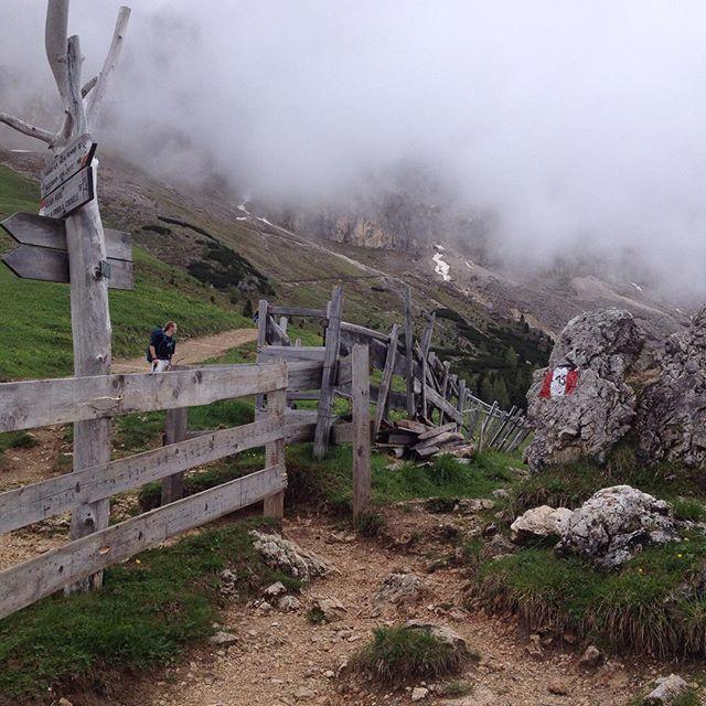 #slowmoment Berge klettern und Murmeltiere suchen in Südtirol <3 #slowliving #slowtravelling #wandern #nature #ecofriendly #hiking #südtirol #Italien #Italy #rosengarten