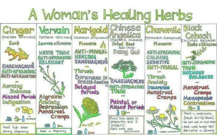 A women's healing herbs